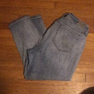 Kut From the Kloth cropped jean